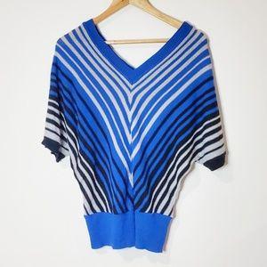 Caren Sport Blue & Silver Striped V-Neck Sweater